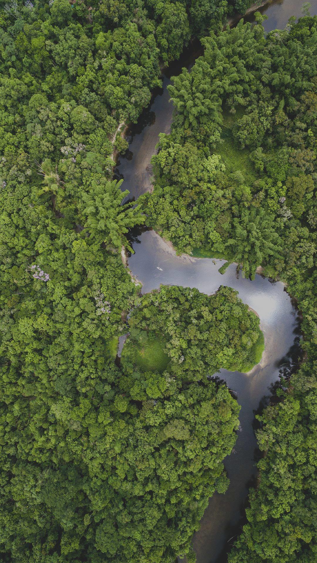 banner-unterseite-nachhaltigkeit-Kopiep64g8xjbMWokA